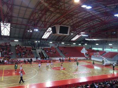 BC Barcelos cai diante do líder Benfica