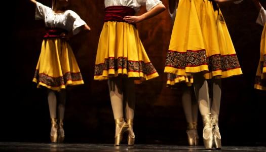 Bailado solidário de jovens bailarinos encheu Espaço Vita