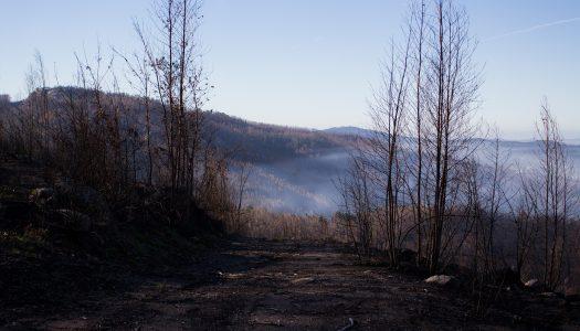 A estrada de carvão