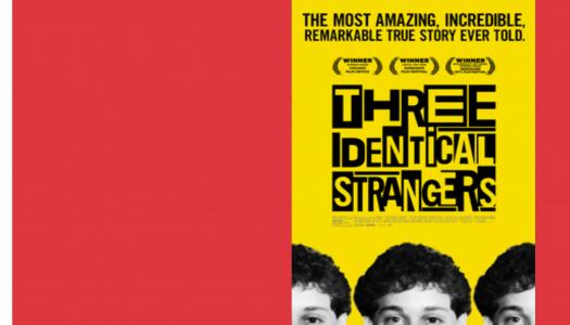 Three Identical Strangers: uma descoberta inesperada