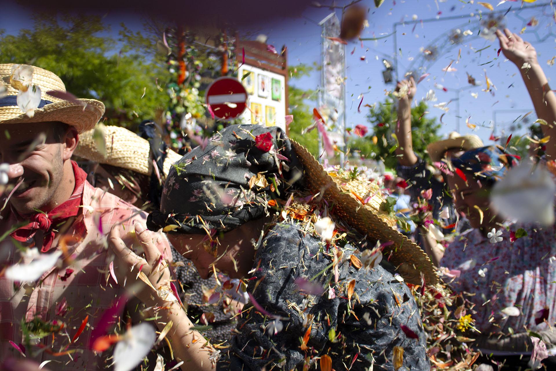 guerra das flores