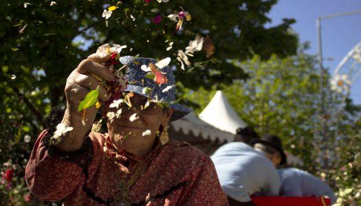 Dia Mundial da Fotografia: 15 imagens que falam por si [fotogaleria]