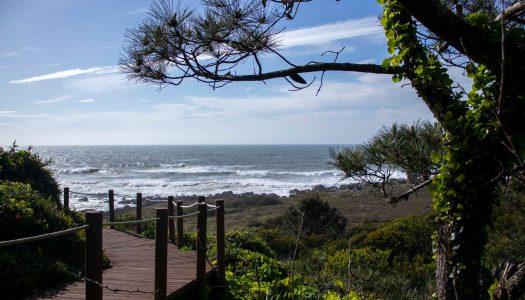 Coronavírus. Praias portuguesas vão passar a ter lotação máxima este verão