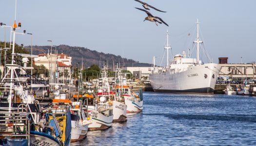 Viana do Castelo promove webinário sobre a Economia Azul