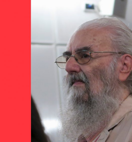 E. M. de Melo e Castro: multiforme