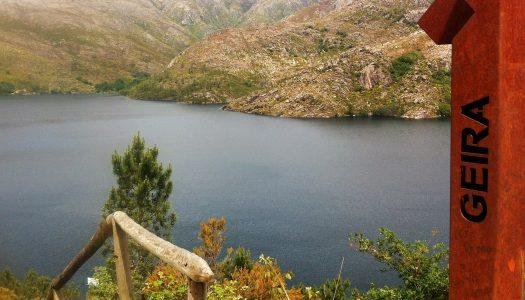 """Os habitats artificiais de água doce podem tornar-se """"armadilhas ecológicas"""""""