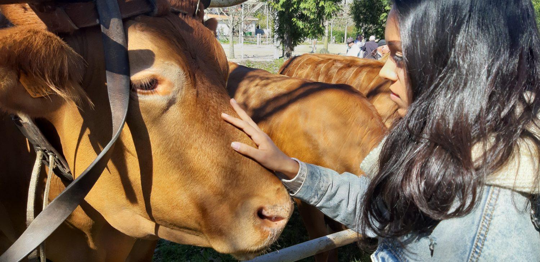 Liliana Barros Dia Mundial do Veganismo vegan