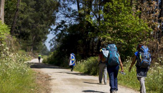 Barcelos vai criar parque de apoio ao peregrino