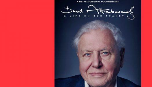 David Attenborough: Uma Vida no Nosso Planeta – um tema que mostra que é necessário agir agora