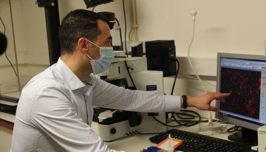 CEB cria tecnologia para detetar bactérias que causam infeções secundárias em doentes com COVID-19