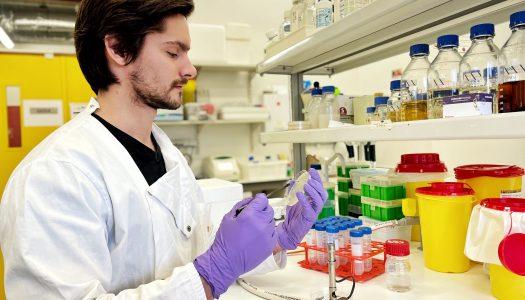 UMinho encontra enzima com potencial na produção de biocombustíveis e farmacêutica