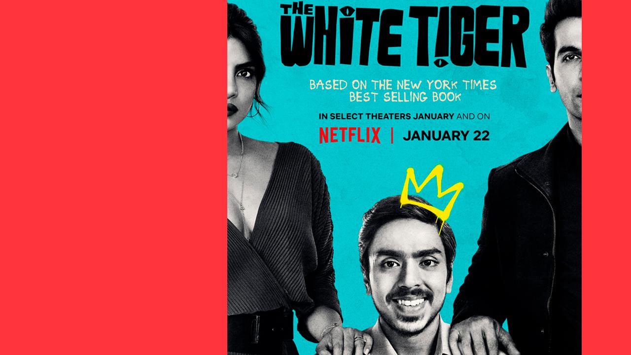 O Tigre Branco: uma denúncia da desigualdade