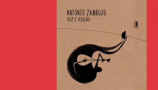 Voz e Violão: o sossego de Zambujo
