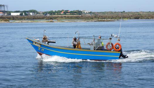 Redes biodegradáveis usadas na pesca em Esposende
