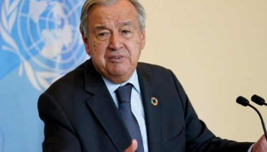 Dia Internacional da Paz: a crise climática enquanto obstáculo à paz mundial